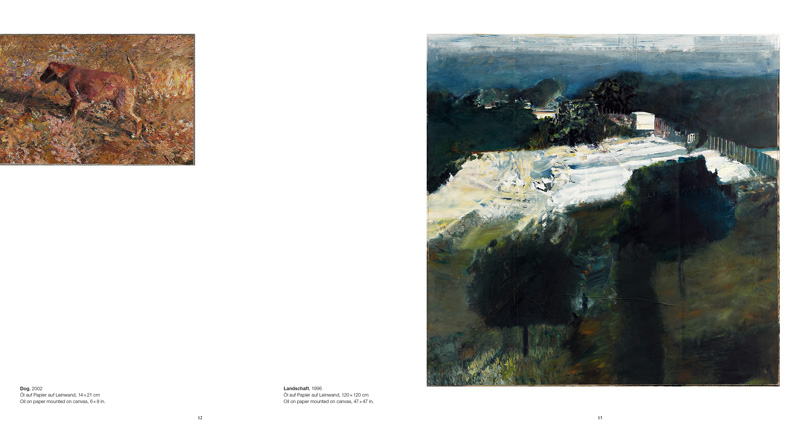 Cover Lukas Salzmann: In the Viewer's Eye – the Unknown